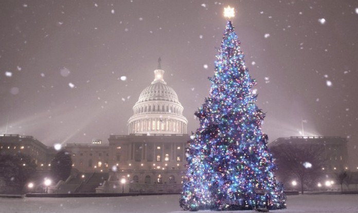 Top 10 Most Amazing Christmas Trees In The USA