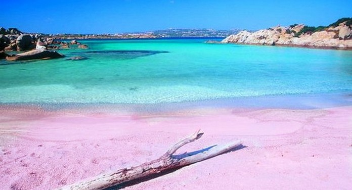 Spiaggia Rosa Budelli The Pink Beach Of Italy